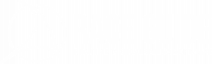 race guide logo white